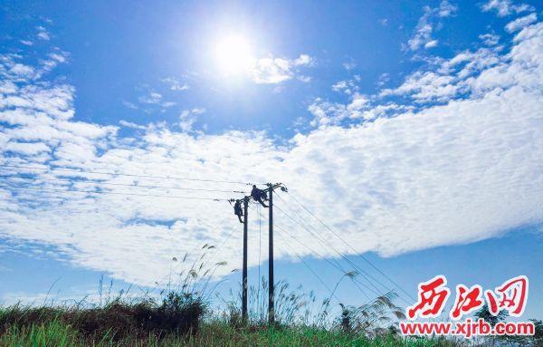 为更好地应对农村今夏用电负荷 快速增长的情况,肇庆德庆供电局电 力工人正在持续开展优化线路工程, 优先保障居民用电。 陈世标 摄