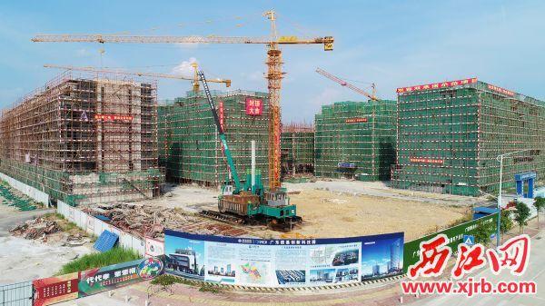 广东信基创新科技园项目现场,力争打造成大湾区科技创新基地。 陈彦成 摄