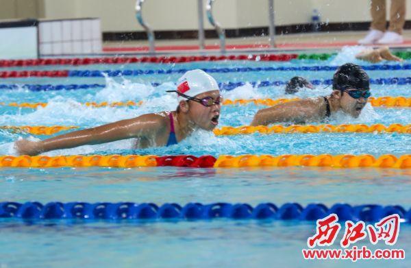 运动员在男子D组100米蝶泳决赛中。西江日报记者 梁小明 摄
