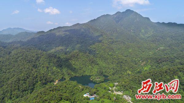 新中国第一个自然保护区——鼎湖山。 西江日报记者 梁小明 摄