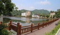 德庆县九市镇洞寮村新农村建设见成效