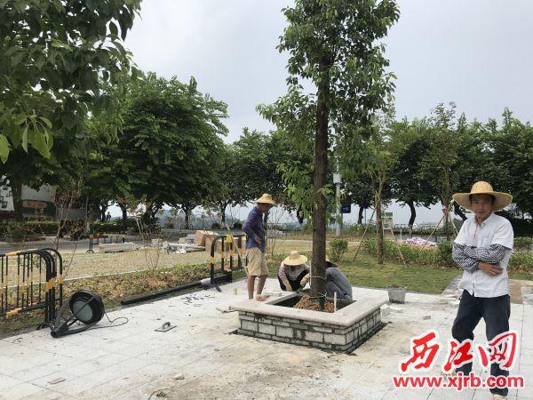在翠星路(星荷路十字路口)节点内,施工人员在进行收尾工作。 西江日报记者 夏紫怡 摄