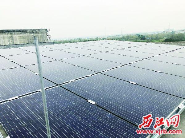 鼎湖区光伏发电项目。