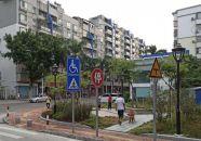 绿植花卉四时景 城区街头处处新