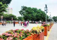 """""""繡""""出如畫風景 提升城市品質"""