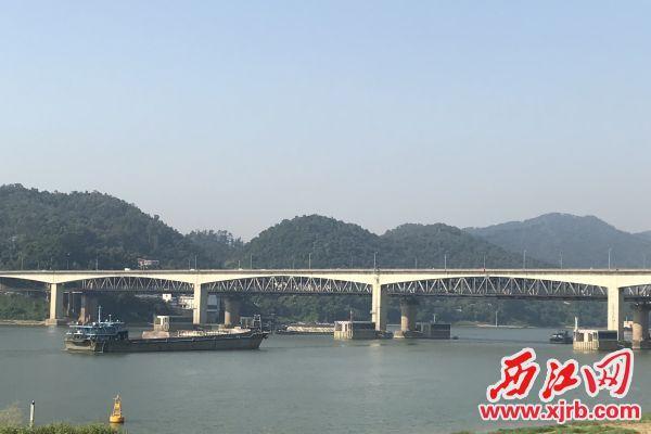 西江大桥如今仍有着不可替代的地位。 西江日报记者 潘粤华 摄