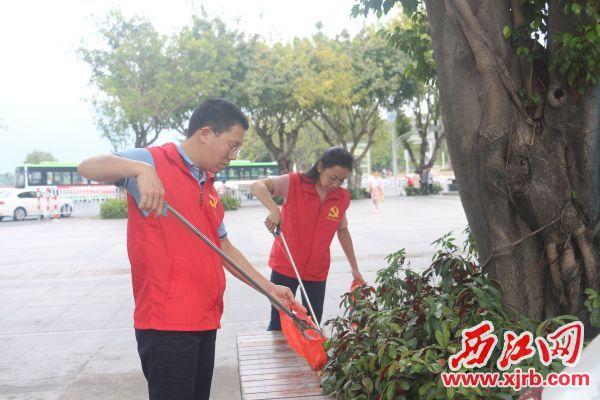 市城管局志愿者在捡拾烟 头。 西江日报记者 严炯明 摄