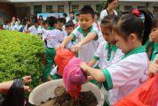 """市实验小学举行""""绿色文化""""品牌活动 学生积攒花泥寄语来春"""