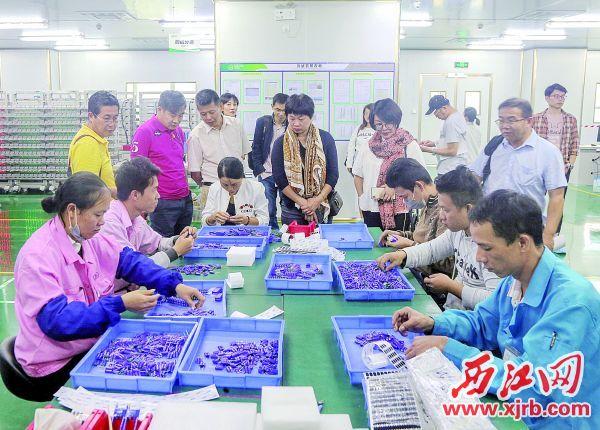 媒体采风团实地参观华师大光电产业研究院的企业。 西江日报记者 曹笑 摄