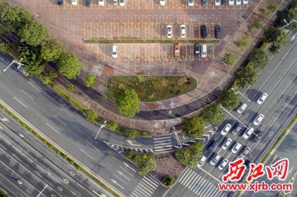 星湖大道和信安路交匯處(市一院轉角處)原來的540平方米環保磚路面,經過改造變成了立體的生態景觀, 與周圍綠化有機的融為一體。 西江日報記者 曹笑 攝