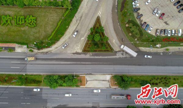 肇慶大道轉璣東路交匯處(金盛花苑)的街 頭小景,不僅與周圍環境更加和諧統一,還為城 區增添一抹帶有生機的綠意。  西江日報記者 曹笑 攝