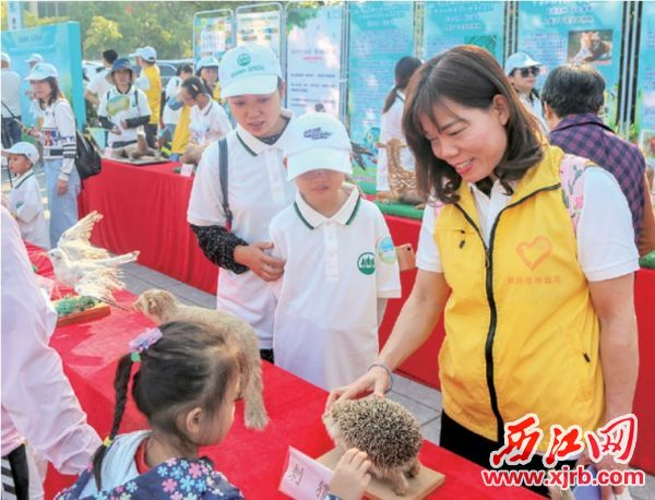 志愿者向市民介紹野生動物保護 的重要性。 西江日報記者 曹笑 攝