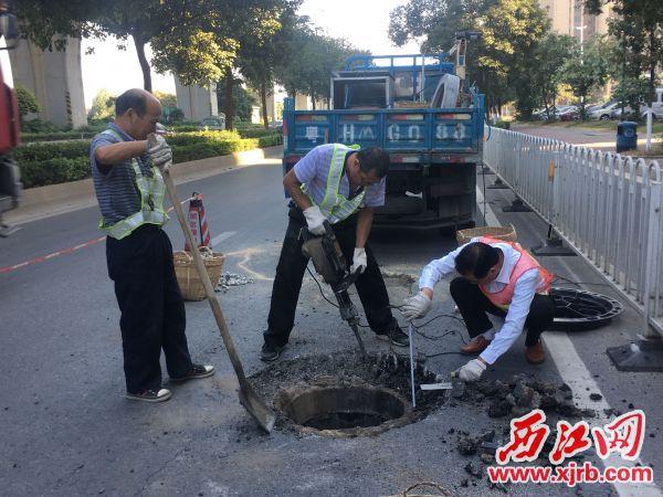 维修队员在肇庆大?#26639;?#36947;上更换破损沙井盖。 西江日报记者 赖小琴 摄