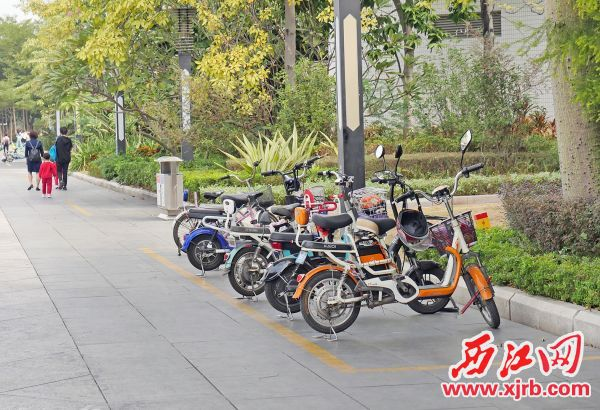 市民在牌坊公园规范停放车辆。 西江日报记者 吴威豪 摄