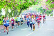 奔跑在美丽山水间——2019肇庆国际半程马拉松侧记