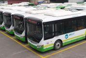 零污染、高顏值、超舒適…肇慶這條跨市公交線路換新車啦!以后乘車認準它