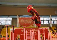 端州舉行迎新春醒獅比賽