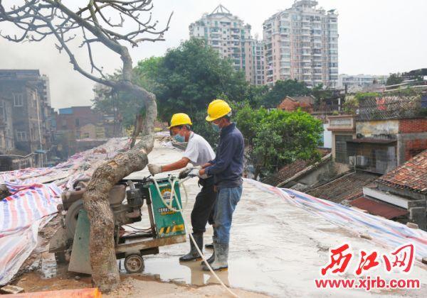 该项目全长约720米,于2019年12月开工,计划2021年3月竣工。 西江日报全媒体记者 梁小明 摄
