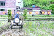 人勤春来早 奋进正当时 ——广宁县部分贫困户春耕复产和转型转产纪事