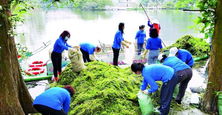 """""""天然氧吧我保育""""  志愿者打撈水草保護星湖水質"""