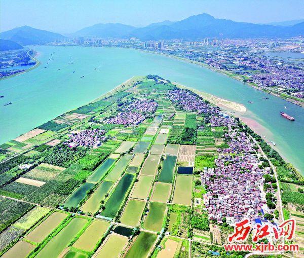 田园如画的砚洲岛。 西江日报记者 朱健兴 摄