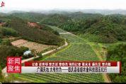 廣闊天地 大有作為——德慶縣省級農業科技園區紀行