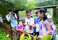 首屆粵港澳自然觀察大賽在肇啟動