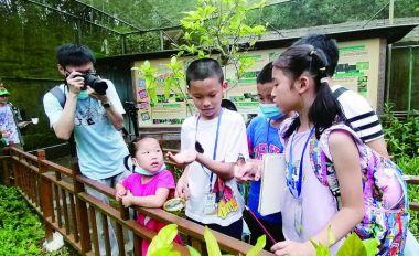 首届粤港澳自然观察大赛在肇启动