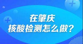 一图看懂   在肇庆,核酸检测怎么做?