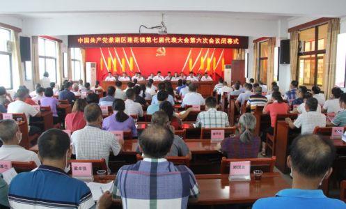 凝心聚力共謀發展  鼎湖區蓮花鎮第七屆黨代會第六次會議勝利召開