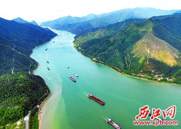 西江肇庆段水质居全国前列。 西江日报记者 吴勇强 摄