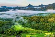 首批國家森林康養基地公布!廣東5處上榜