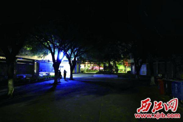 鼎湖区新园七街附近缺乏巷灯。