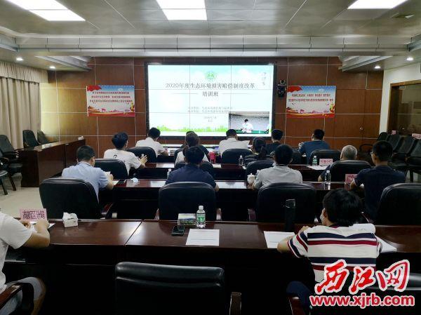 我市在分會場參加生態環境部2020年度生態環境損害賠償制度改革培訓班。 記者 岑永龍 攝