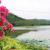 【全域旅游】美丽台洞村——封开首个湿地生态公园就在此