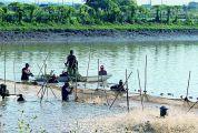 鼎湖沙浦水产养殖户喜获专属生产资金支持