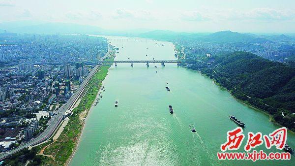 西江肇庆段是全国水质量最好的江河之一。 西江日报记者 杨永新 摄