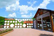 鼎湖强化人居环境整治 文明创建提升乡村美丽内涵