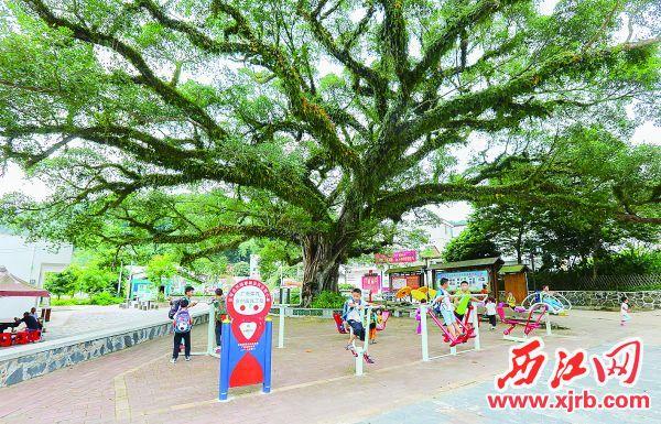 德庆县武垄镇双象村里,孩子们在健身玩耍。 西江日报记者 梁小明 摄