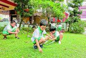 肇庆市实验小学开展省级课题研究成效显著 校园绿色文化让学生爱上劳动实践