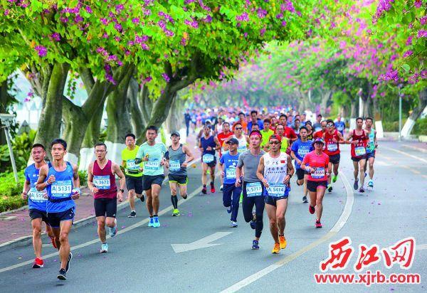 在2019肇庆国际半程马拉松赛 中,选手们奔跑在美丽的赛道上。  西江日报记者 曹笑 摄