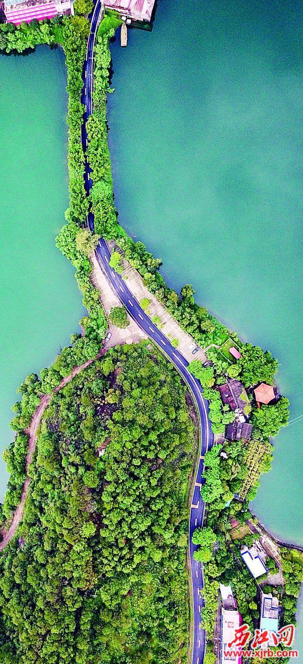 高空下的鼎湖区九龙湖,景色迷人。