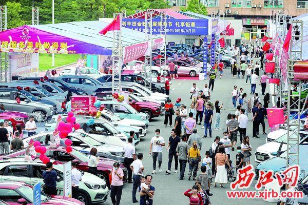 汽车文化节吸引大批市民游客前来选购。 西江日报记者 曹笑 摄