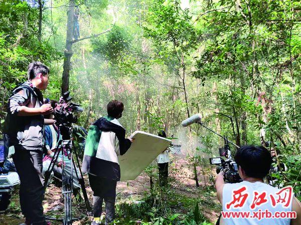 剧组人员在白马山上取景。 西江日报通讯员 柴嘉蔚 摄