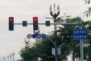 肇庆这条路红灯可直行,别忘了礼让行人!