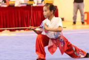 隆重、热烈、和谐、文明!2020广东省青少年武术套路锦标赛圆满结束