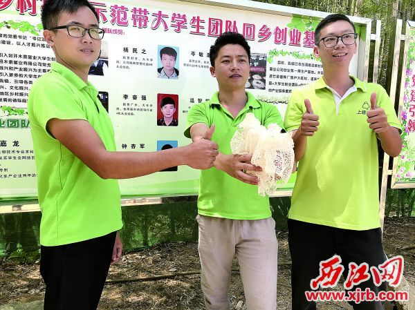 陈嘉龙和同事们展示基地里产出的新鲜竹荪。 西江日报记者 王永强 摄