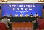 肇庆市扫黑除恶办组织举行全市扫黑除恶专项斗争新闻发布会
