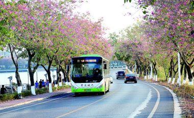 讓公交車成為文明城市流動風景線
