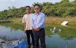 因地制宜、创新服务模式,肇庆鼎湖农行鼎力支持乡村振兴工作